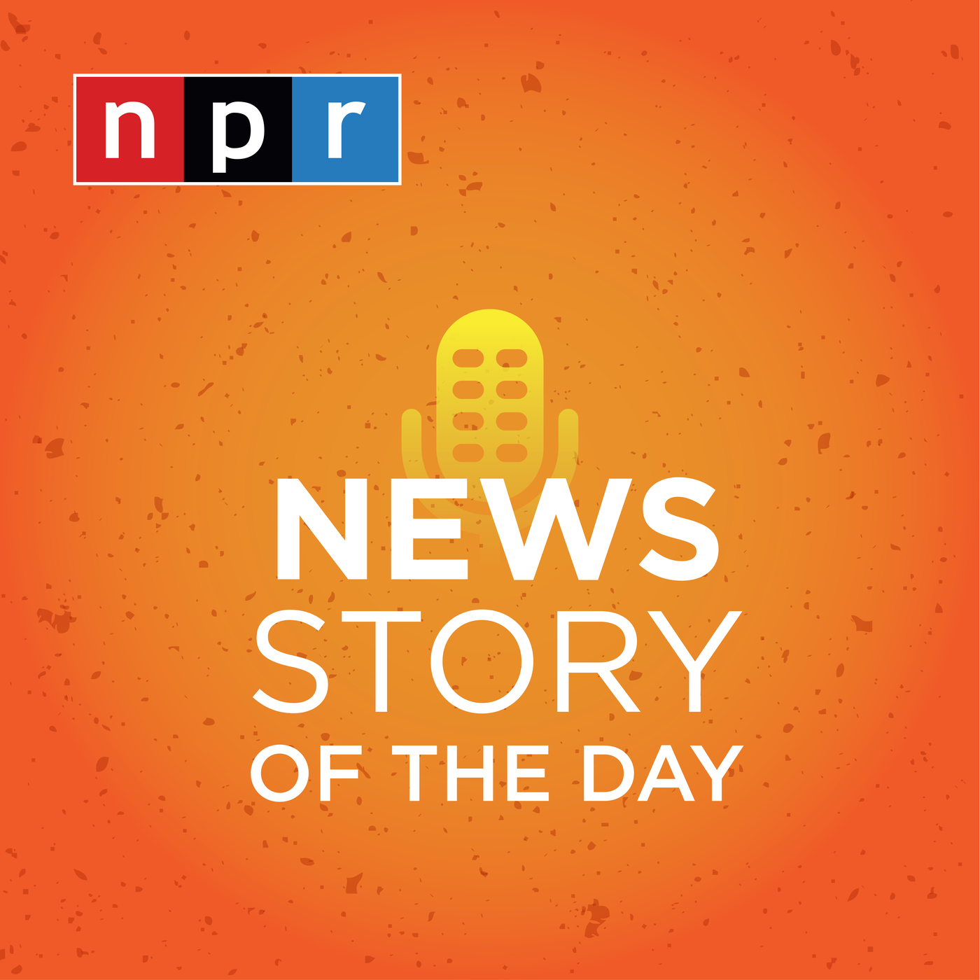 NPR Topics: Story of the Day Podcast